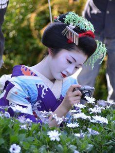 maiko Satsuki in June Japanese Geisha, Japanese Beauty, Japanese Art, Asian Beauty, Koi, Kimono Japan, Beautiful Japanese Girl, Modern Pictures, Japanese Hairstyle