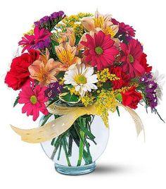 Online Flower Delivery in Ahmedabad, Send Flowers, Same Day Florist Seasonal Flowers, Fresh Flowers, White Flowers, Beautiful Flowers, Spring Flowers, Get Well Flowers, Send Flowers, Flowers Today, Online Florist