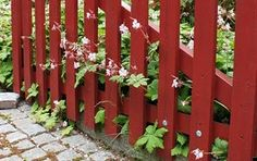 red fence gate