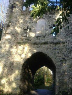Reigate castle Castle, Palace