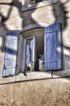 : Saint Saturnin les Avignon, Vaucluse, Provence, France