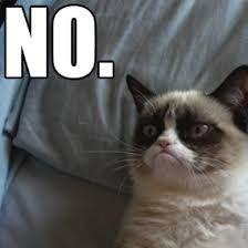 Resultado de imagen para grumpy cat meme