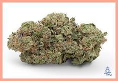 bud online store - Google Search