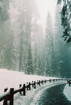 This reminds me of driving-up to the Sierra's to go skiing with my family....magical~~