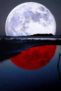 beauty mother nature:  Lunar reflection share moments