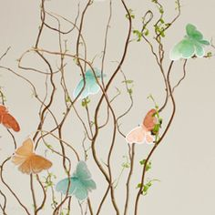Learn how to make this DIY butterfly centerpiece -perfect for spring!