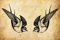 The swallow is a bird that chooses a mate for life and will only nest with that bird and no other. Therefore a swallow tattoo is also a symbol for everlasting love and loyalty to the family. Swallow pairs travel long distances, only to find their way back to each other at home.