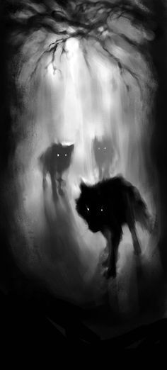 Image result for charcoal rain wolf artwork