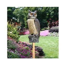 Owl Scarecrow Rotating Head Garden Porch Patio Deck Dock Bird Decoy Pest Control #Dalen