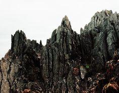 Sentinels by Paul Murphy