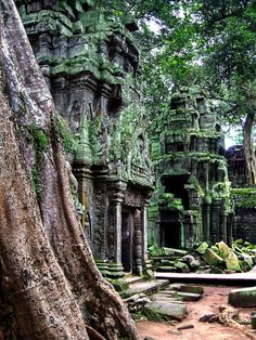 Angkor Wat. Gorgeous mystery.