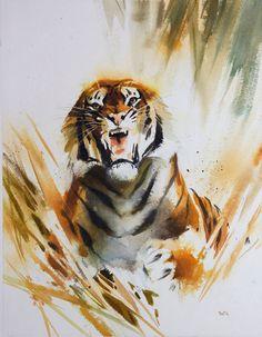 watercolour tiger - Google Search