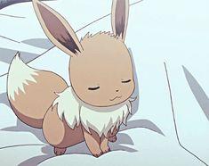 Chickpea the Hero Pokemon Gif, Pokemon Kalos, Pokemon Eeveelutions, Eevee Evolutions, Pokemon Memes, Eevee Wallpaper, Cute Pokemon Wallpaper, Eevee Cute, Cute Pikachu