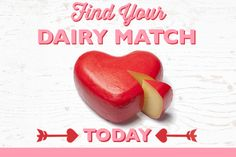 Find Your Dairy Match: Tips to Pair Families with High-Quality Protein