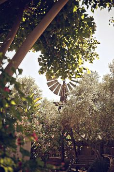 windmill decorationfor a rustic wedding Old Windmills, Scenery Pictures, Country Lifestyle, Pretty Pictures, Pretty Pics, Down On The Farm, Old Farm, San Diego Wedding, Wedding Images