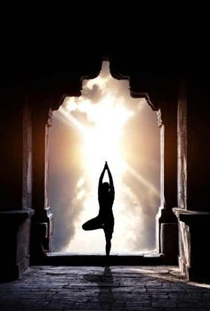 1000 images about yoga on pinterest  silhouette vector