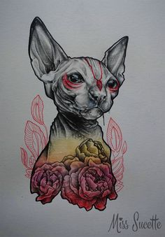 Sphynx cat illustration by Miss Sucette