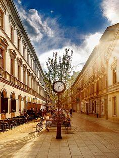 """przejście do całej galerii """"Łódź Moje Miasto"""""""