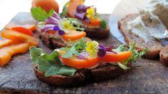 Jamie Aston » Five Edible Flower Recipes