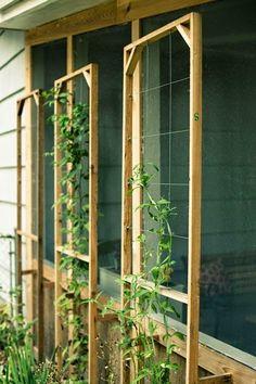 30 κατασκευές για αναρριχώμενα φυτά. | Φτιάξτο μόνος σου - Κατασκευές DIY - Do it yourself