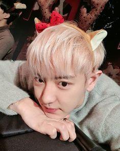 He is so cute . Kaisoo, Chanbaek, Kyungsoo, Chanyeol Cute, Park Chanyeol Exo, Exo Ot12, Exo K, K Pop, Chen