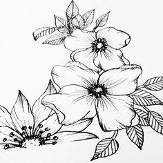 Flower Doodles, Watercolor, Flowers, Watercolor Painting, Royal Icing Flowers, Flower, Watercolors, Florals, Bloemen