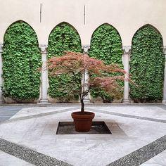 Cortili nascosti e simmetria  #cortilidimilano#milanosegreta#simmetry#courtyard#archilovers#architecture#architectureporn#architettura#buildingporn#buildinglover#design#designporn#explore#neverstopexploring#milano#igersmilan#vegansofig#flowers#flowerpower#green#whatitalyis#italia#igersitalia#milanodavedere#milancity#edera#milaninsight#viasantamarta#urbanexploration#5vie by monjasour