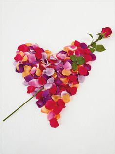 petal heart . . .