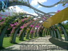 www.eniando.blogspot.com - The Arbour in South Bank