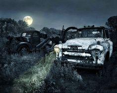 In the Moonlight - Photograph at BetterPhoto.com