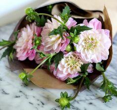 How to keep flowers fresh, via Gardenista.