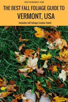 Vermont Fall Foliage drives features the best fall destination of USA, New england with best places to see fall foliage, fall foliage guide, routes to see fall colors and a handy fall foliage tracker link. Read about this ultimate USA fall destination to