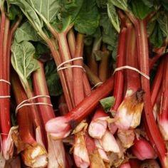 První jarní zavařenina? Zkuste rebarboru! - Vaření.cz Rhubarb Curd, Rhubarb Chutney, Raspberry Rhubarb, Rhubarb Crumble, Crumble Topping, Blackberry, Strawberry, Summer Recipes, Great Recipes