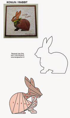 Irisvouwen: Konijn / Rabbit