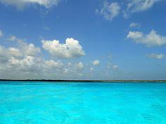 want to go back! Cozumel Mexico, Cozumel Island, Riviera Maya Mexico, Wonderful Places, Vacation Spots, Places To Travel, Places Ive Been, Vacations, Landscapes