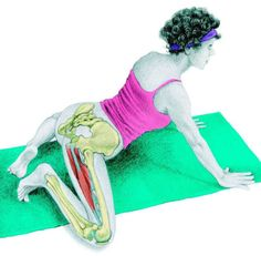 So what kind of muscles do you stretch when you do yoga? Look at these stretching exercises with pictures do find out - Vicky Tomin is a Yoga exercise Hata Yoga, Yoga Fitness, Health Fitness, Muscle Stretches, Kundalini Yoga, Stretching Exercises, Stay Young, Muscle Groups, How To Do Yoga