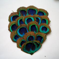 5 Import Peacock Feather Pads by FeatherShoppe on Etsy, $27.50
