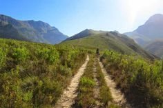 From leisurely rambles to invigorating coastal and mountain hikes, Cape Town abounds with magnificent hiking trails. These are the best hikes in Cape Town. Mountain Hiking, Hiking Tips, Get Outdoors, Best Hikes, Stay The Night, Cape Town, Adventure Time, South Africa, Trail