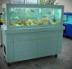 Aquarium Services France c'est aussi les #Viviers !