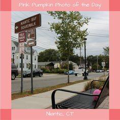 #PinkPumpkin #PhotoOfTheDay #SmithsAcresPumpkins #NianticBayBoardwalk#Niantic