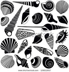 shell silhouettes