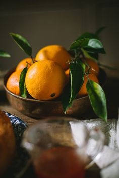Dip Recipes, Cake Recipes, Lime Cake, Lemon Lime, Fall Harvest, Orange, Food Styling, Dips, Food Photography