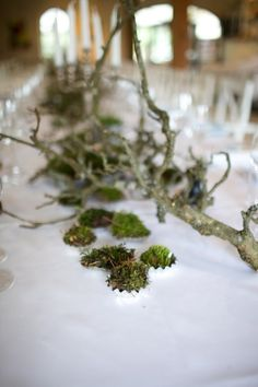 Love the moss and twigs idea