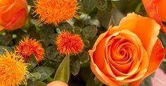 KW 41 langstielig: INDIAN SUMMER | 6 langstielige Rosen und 10 Färberdisteln für Ihre Bodenvase | BLOOMY DAYS