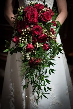 Cascading bouquet of red roses, white berries. The greenery is a mix of Israeli ruscus leaves and soft Asparagus Ferns