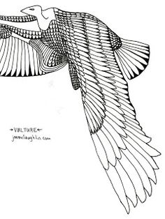 Egyptian vulture tattoo | Jon McLaughlin's Illustration Blog