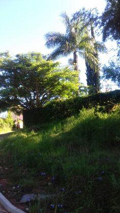 Borda da Mata em Minas Gerais