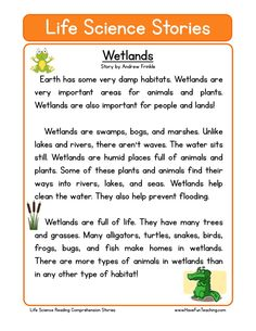 This Wetlands Life Science Reading Comprehension Worksheet will help your students build their reading comprehension skills while reading a non-fiction text about the wetlands.