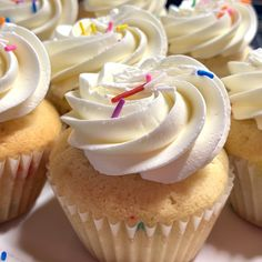 Vegan Vanilla Cupcakes, Cupcake Day, Sprinkles, November, Desserts, Food, November Born, Tailgate Desserts, Deserts