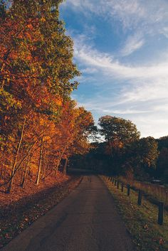 """goodoldfreshair: """" Two roads diverged in a wood and I - I took the one less traveled by, and that has made all the difference. Robert Frost Fall Drive on Flickr. """""""